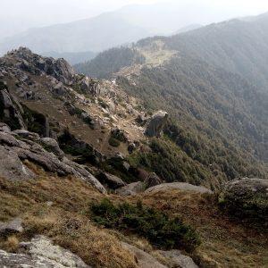 Churdhar Trail